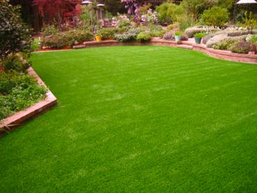 Artificial Grass Photos: Artificial Grass Carpet Hoyt, Kansas Home And Garden, Backyard Makeover