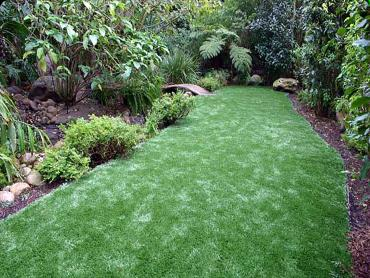 Artificial Grass Carpet Linn, Kansas Lawn And Garden, Backyard Ideas artificial grass