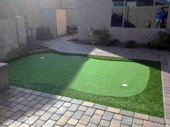 Artificial Grass Photos: Artificial Turf Viola, Kansas Lawn And Garden, Backyard Ideas