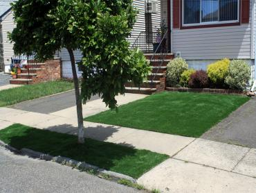 Artificial Grass Photos: Fake Grass Clay Center, Kansas City Landscape, Front Yard Landscape Ideas