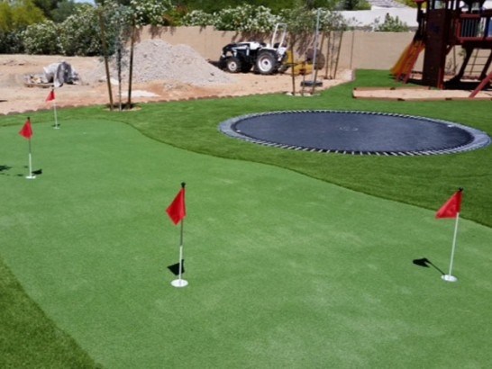 Fake Grass Lebo, Kansas Putting Green Turf, Backyard Garden Ideas artificial grass