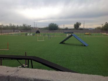 Artificial Grass Photos: Fake Grass Ottawa, Kansas Backyard Sports, Recreational Areas