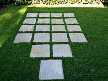Artificial Grass Photos: Fake Lawn Treece (historical), Kansas Lawn And Garden, Small Backyard Ideas