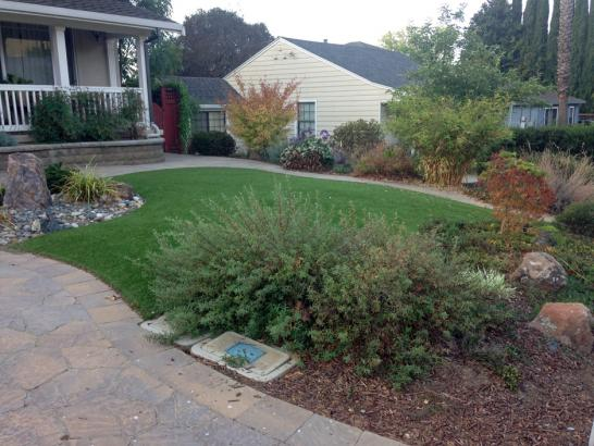 Grass Carpet Manter, Kansas Home And Garden, Front Yard artificial grass