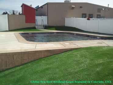 Grass Turf Andale, Kansas Landscape Photos, Natural Swimming Pools artificial grass