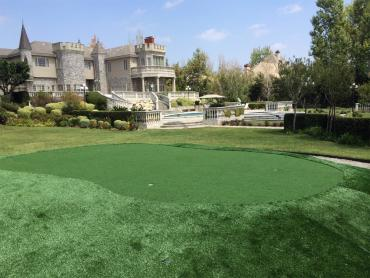 Grass Turf Cheney, Kansas Best Indoor Putting Green, Front Yard Ideas artificial grass