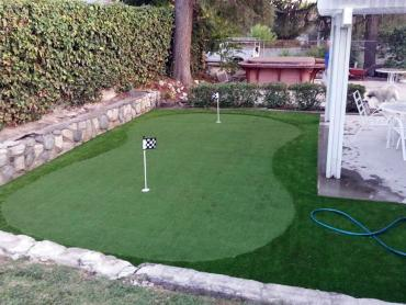 Artificial Grass Photos: Grass Turf Valley Falls, Kansas Landscape Design, Backyard Makeover