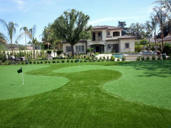 Artificial Grass Photos: Grass Turf Winona, Kansas Putting Greens, Small Front Yard Landscaping