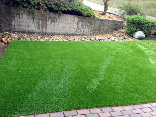 Lawn Services Lenexa, Kansas Landscaping, Beautiful Backyards artificial grass
