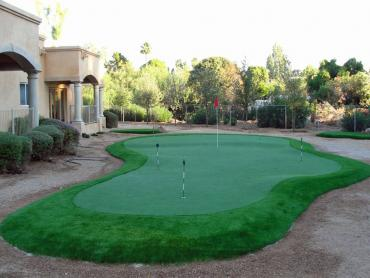 Artificial Grass Photos: Lawn Services Scranton, Kansas Landscape Photos, Backyard Designs