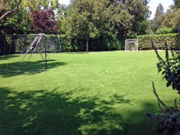 Artificial Grass Photos: Plastic Grass Dwight, Kansas Backyard Playground, Backyard Makeover