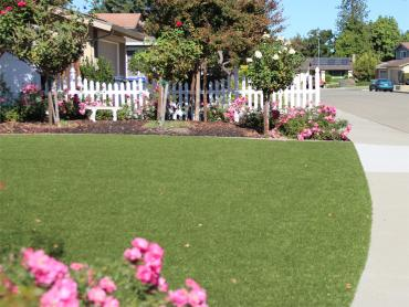 Artificial Grass Photos: Synthetic Grass Cost Eudora, Kansas Landscaping Business, Front Yard Landscaping Ideas