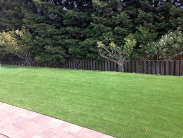 Artificial Grass Photos: Synthetic Grass Cost Holton, Kansas Lawns, Backyards