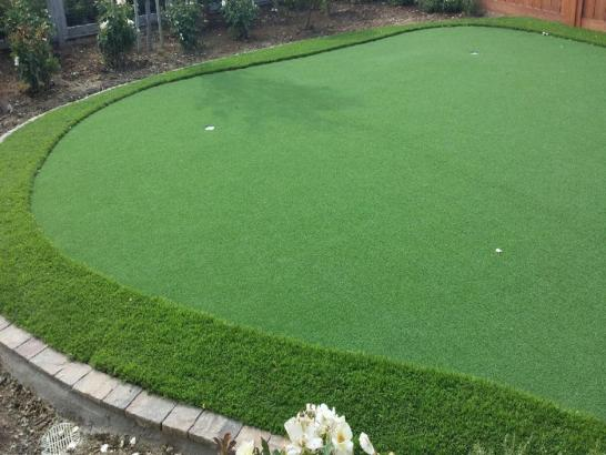 Artificial Grass Photos: Synthetic Grass Cost Partridge, Kansas Home And Garden, Backyard Makeover
