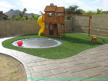 Artificial Grass Photos: Synthetic Lawn Clearwater, Kansas Playground Flooring, Small Backyard Ideas