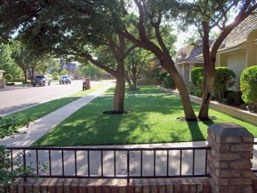 Synthetic Lawn Colony, Kansas City Landscape, Front Yard Landscape Ideas artificial grass