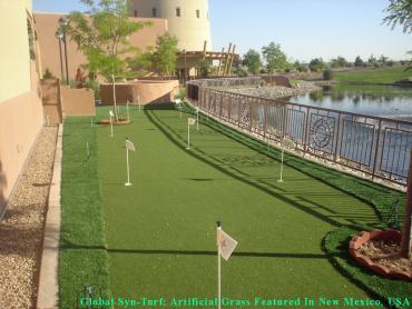 Synthetic Lawn Park City, Kansas Putting Green Grass, Backyard Designs artificial grass