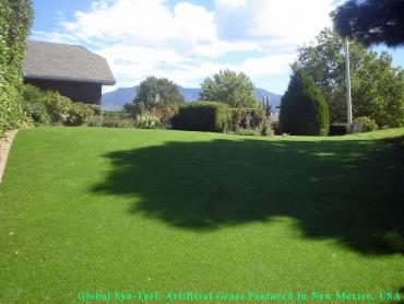 Synthetic Turf Maize, Kansas Lawns, Backyard Garden Ideas artificial grass