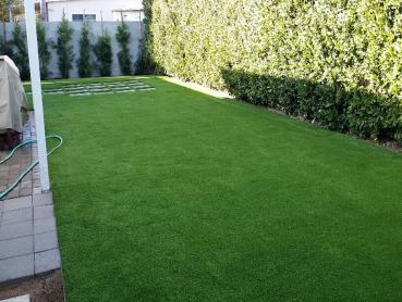 Artificial Grass Photos: Synthetic Turf Perry, Kansas Fake Grass For Dogs, Backyard Makeover