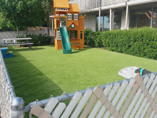 Artificial Grass Photos: Turf Grass Fall River, Kansas Landscape Photos, Beautiful Backyards