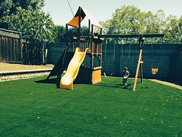 Artificial Grass Photos: Turf Grass La Crosse, Kansas City Landscape, Backyard Garden Ideas