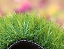 Artificial Lawn Grass For Pet Care Center